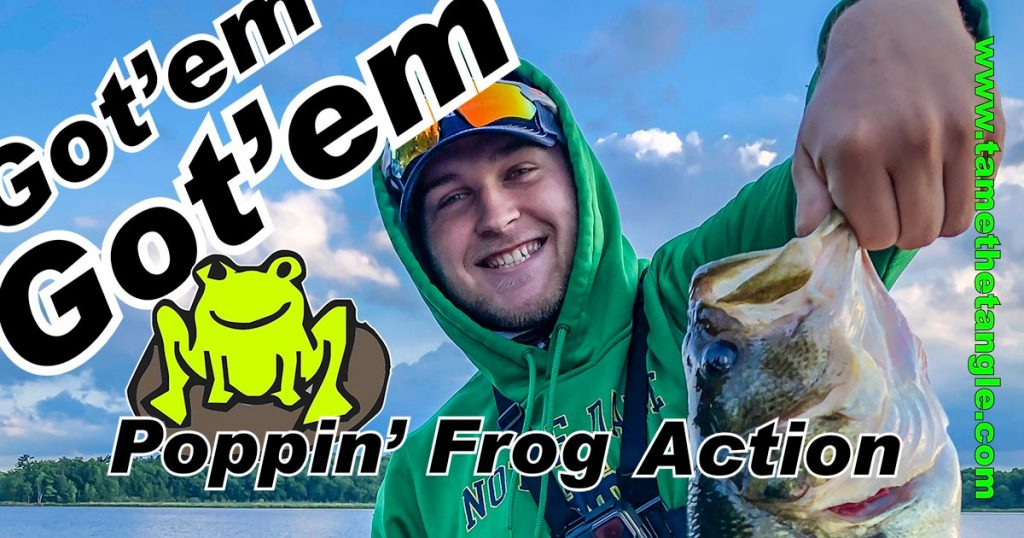 Stick Jacket Popping Frog Action